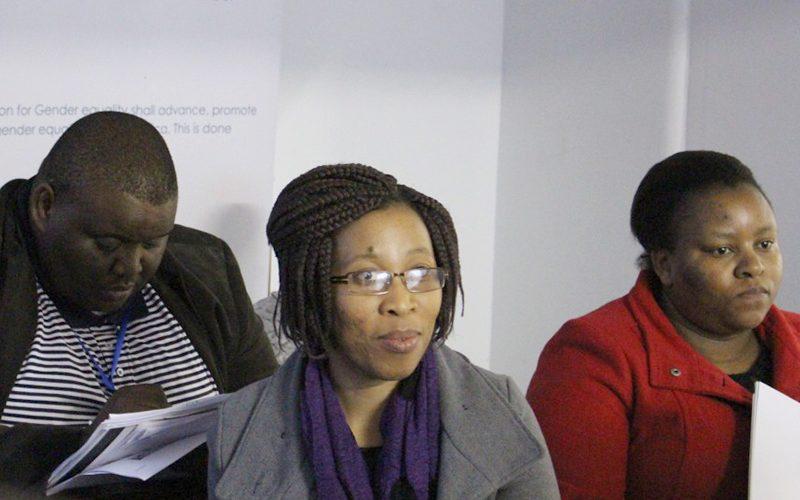 CGE Parliamentary Oversight 2015b